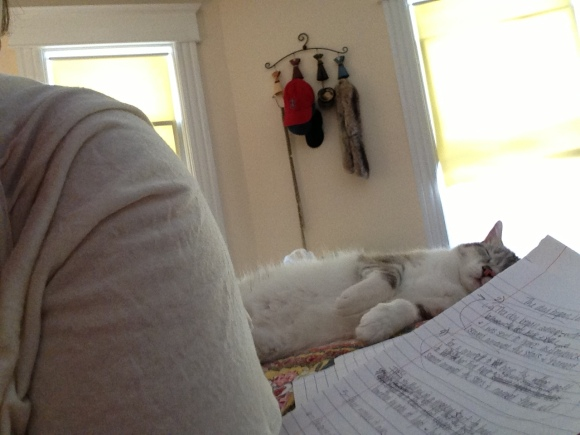 My Favorite Writing Assistant