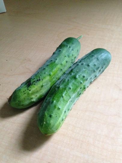 cucumber pic